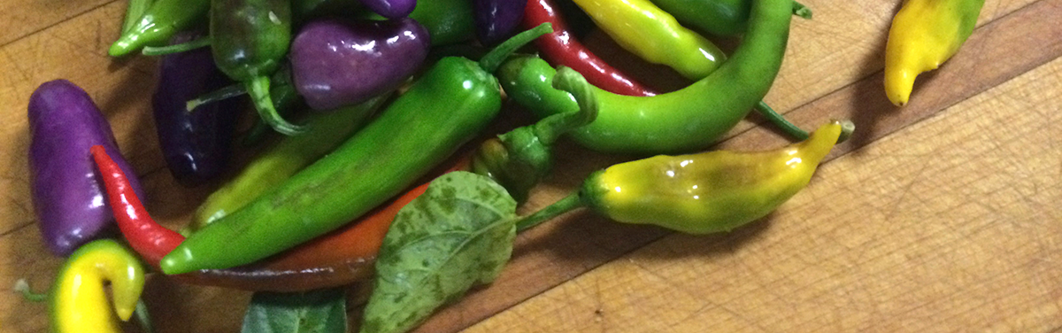 Peppers being prepared by the best catering company in Columbia County, Simons Catering